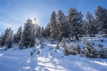 Lots And Land for sale in TBD REDHILL RD MIDDLE FORK VISTA, Fairplay, CO, 80440