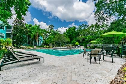 Apartment for rent in City Park Clearwater, Clearwater, FL, 33765