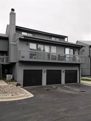 Condo for sale in 190 Howard Court 5, Fox Lake, IL, 60020