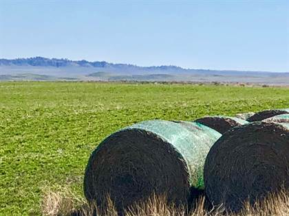 Farm And Agriculture for sale in 0 Ruzick Road, Ryegate, MT, 59074