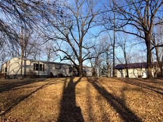 Single Family for sale in 19750 Sandpiper Road, Bluford, IL, 62814