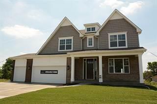 Single Family for sale in 10021 El Cameno Real Drive, Orland Park, IL, 60462