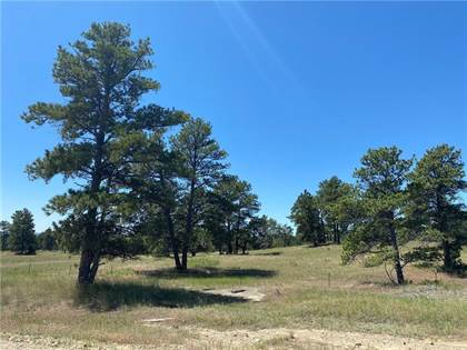 Lots And Land for sale in Lot 47 N Delphia ROAD, Roundup, MT, 59072