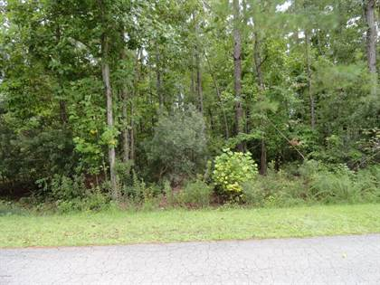 Lots And Land for sale in 108 Seattle Slew Drive, Cherry Branch, NC, 28532