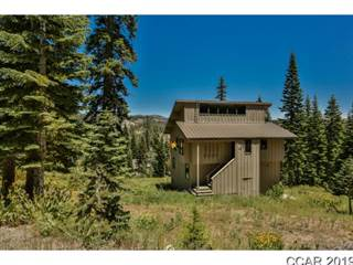 Single Family for sale in 474 Snowshoe Road, Bear Valley, CA, 95223