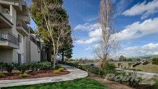 Apartment for rent in Creekside Village - Creekside Village Plan 2A, Fremont, CA, 94536