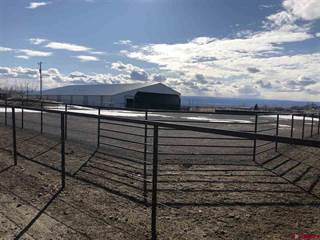 Farm And Agriculture for sale in 67290 Lasalle Road, Montrose, CO, 81401