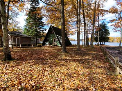 Residential Property for sale in 5863 N Benson Road, Fountain, MI, 49410