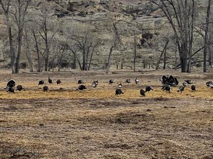 Farm And Agriculture for sale in 4030 Custer Frontage RD, Pompeys Pillar, MT, 59064