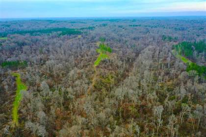 Lots And Land for sale in 001 STRICKLAND RD, Yazoo, MS, 39194