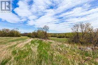 Farm And Agriculture for sale in 8670  RAVENSHOE  RD, Georgina, Ontario, L9P1R2