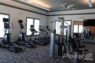 Apartment for rent in Atwater Apartments - Lake Ontario - Second Floor, Tavares, FL, 32778
