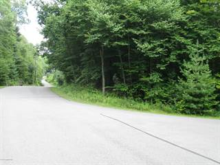Land for sale in 29 ROUTE 423, Pocono Pines, PA, 18350