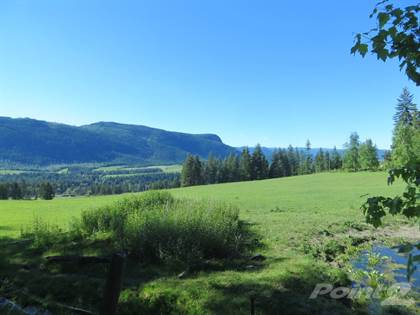 Farm And Agriculture for sale in 160 Acres — MASSIVE FARM —SAFE PLACE TO BE IN, Fraser Lake Rural, British Columbia
