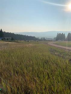 Lots And Land for sale in Nhn Galena Road, Philipsburg, MT, 59858