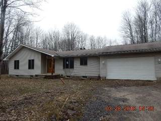 Single Family for sale in 2139 Hayford Rd, Rock Creek, OH, 44084