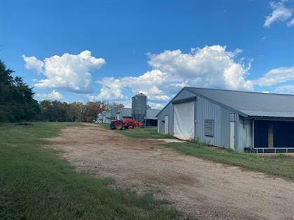 Farm And Agriculture for sale in 3422 FM 417 W, Center, TX, 75935