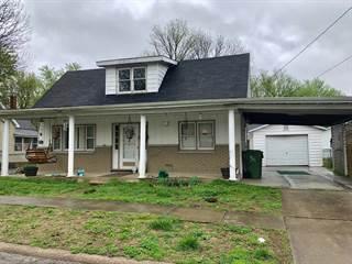 Single Family for sale in 903 Jefferson Avenue, Johnston City, IL, 62951