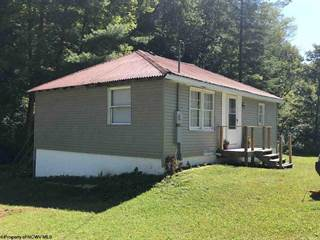 Single Family for sale in 12 Bays Road, Birch River, WV, 26610