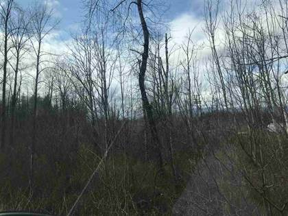 Vacant Land for sale in Lot 2 YALE ROAD, Rosedale, British Columbia, V0X1X1