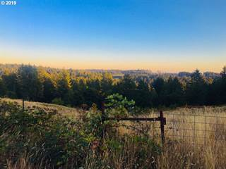 Land for sale in 25040 S New Kirchner Rd., Mulino, OR, 97045