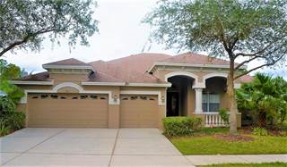 Single Family for sale in 6615 THORNTON PALMS DRIVE, Tampa, FL, 33647
