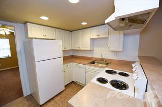 Apartment for rent in Green Oaks - 1 Bedroom, Tampa, FL, 33616