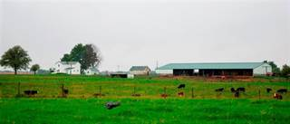 Farm And Agriculture for sale in 4263 ST. RT. 67, Kenton, OH, 43326