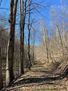 Farm And Agriculture for sale in TBD Trouser Leg Road, Wallace, WV, 26448