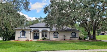Residential Property for sale in 13133 Roseanna Drive, Spring Hill, FL, 34609