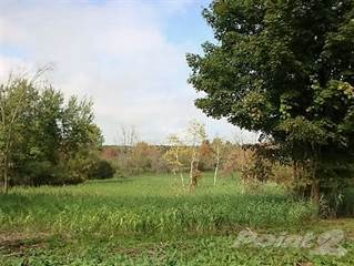Land for sale in 50.99 Acres N. Ridge Rd., Ashtabula, OH, 44004