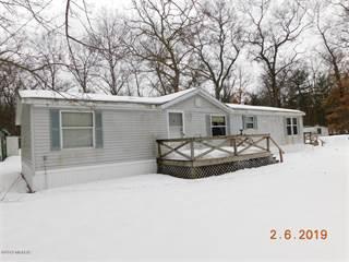 Single Family for sale in 14871 Coates Highway Highway, Brethren, MI, 49619