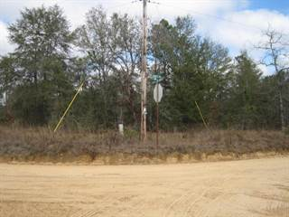 Land for sale in 00 N SILVER LAKE, Greater Alford, FL, 32448