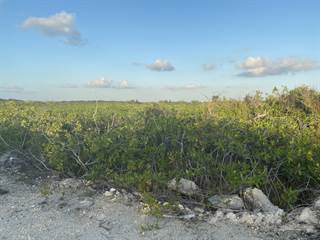 Residential Property for sale in Secret Beach Lots For Sale, Ambergris Caye, Belize