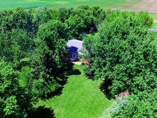 Single Family for sale in 1870 West SCULLY Road, Dwight, IL, 60420