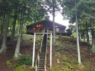 Single Family for sale in 6079 BEATONS LAKE RD, Watersmeet, MI, 49969
