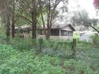 Single Family for sale in 1186 E Runnels Lane, Hernando, FL, 34442