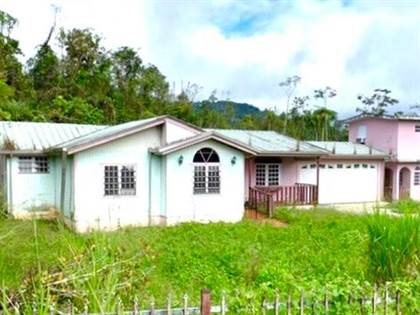 Residential Property for sale in No address available, Adjuntas, PR, 00601