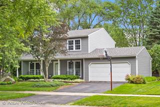 Single Family for sale in 1106 Langley Circle, Naperville, IL, 60563