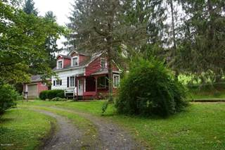 Single Family for sale in 1141 Stewart Hill Rd., Greater Renovo, PA, 17729