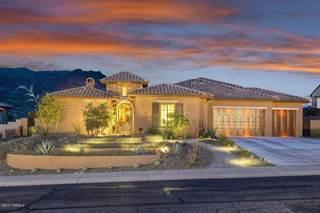 Single Family for sale in 66125 E Peregrine, Tucson, AZ, 85739