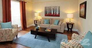 Apartment for rent in Promenade At Belleair Apartments - The Ivy, Clearwater, FL, 33764