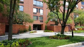 Condo for sale in 1143 South PLYMOUTH Court 201, Chicago, IL, 60605