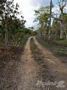 Farm And Agriculture for sale in Farm land 88 acres ready for sustainable farming, Monte Plata, Monte Plata