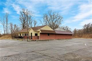 Comm/Ind for sale in 27736 EUREKA Road, Romulus, MI, 48174