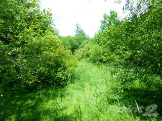 Land for sale in LT30 JOHN STREET, Meaford, Ontario, N4L 1W7