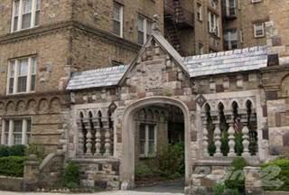 Apartment For Rent In 85 Van Reypen Street Apts One Bedroom Jersey City
