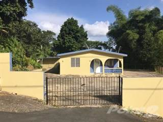 Residential Property for sale in Bo. Rio Grande, Jayuya, PR, 00664