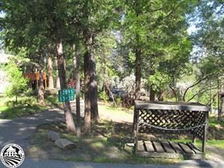 Single Family for sale in 12091 Breckenridge 1330, Groveland, CA, 95321