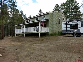 Single Family for sale in 472 MONUMENT, Pagosa Springs, CO, 81147